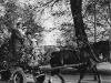 horse_cart_limhamnsvagen_a_35