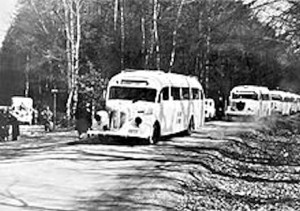 The White Buses on their way to Sweden going through Schleswig-Holstein in northern Germany