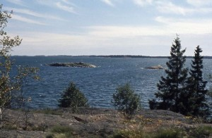 View over the Baltic Sea from the little rocky island where we were picnicking. The island in the background was covered with seals.